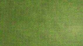 Campo de futebol da grama verde da parte superior Vista do quadrocopter Textura vídeos de arquivo
