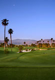 Campo de golf con las palmeras Imagen de archivo libre de regalías