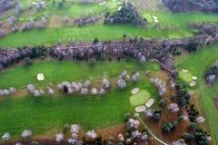 Campo de golf con los árboles desde arriba Foto de archivo