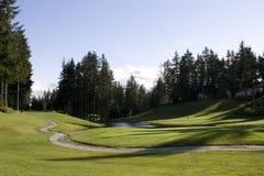 Campo de golf de la vecindad Foto de archivo libre de regalías
