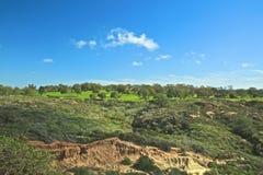 Campo de golf de los pinos de Torrey Fotos de archivo libres de regalías