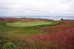 Campo de golf de Michigan Imagen de archivo libre de regalías