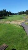 Campo de golf del noroeste pacífico Fotos de archivo libres de regalías