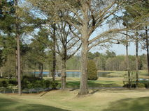 Campo de golf en Augusta fotografía de archivo libre de regalías