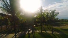 Campo de golf en centro turístico tropical de lujo Puesta del sol sobre campos, argumentos y palmeras de deporte almacen de video