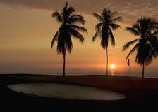 Campo de golf en la puesta del sol Foto de archivo libre de regalías