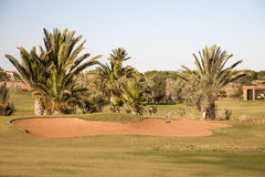 Campo de golf en Marrakesh Foto de archivo