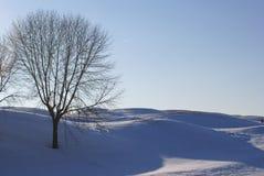 Campo de golf en nieve Foto de archivo