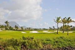 Campo de golf en paraíso Imágenes de archivo libres de regalías