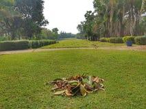Campo de golf en Vientián, Laos fotografía de archivo libre de regalías