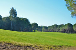 Campo de golf hermoso Fotos de archivo