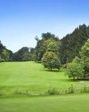 Campo de golf idílico con el bosque Fotografía de archivo libre de regalías