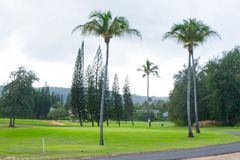 Campo de golf de la bahía de la tortuga imagen de archivo