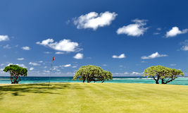 Campo de golf tropical Fotografía de archivo libre de regalías