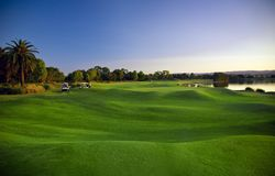 Campo de golf y cochecillos Imagen de archivo