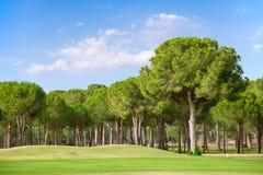 Campo de golfe Foto de Stock