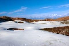 Campo de golfe coberto nevado das ligações com bandeira amarela fotografia de stock royalty free
