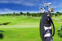 Campo de golfe com árvore do plam e saco de golfe foto de stock