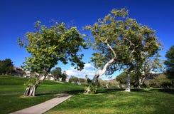 Campo de golfe da vizinhança Imagens de Stock Royalty Free