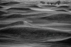 Campo de golfe de BW Fotos de Stock Royalty Free