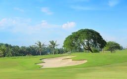 Campo de golfe do campo de golfe imagens de stock