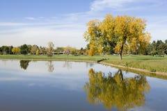 Campo de golfe do parque da cidade Imagem de Stock Royalty Free