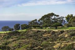 Campo de golfe em Torrey Pines La Jolla California EUA perto de San Diego Imagem de Stock Royalty Free
