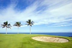 Campo de golfe, Kona, HI Fotografia de Stock