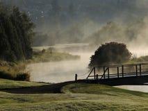 Campo de golfe nevoento da manhã fotografia de stock royalty free