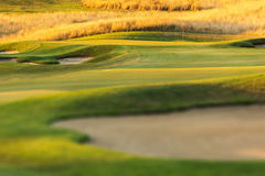 Campo de golfe no por do sol Foto de Stock Royalty Free