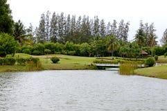 Campo de golfe que põe o verde de superfície foto de stock