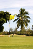 Campo de golfe tropical Foto de Stock Royalty Free