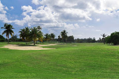 Campo de golfe tropical Foto de Stock