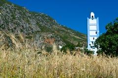 Campo de grão com minarete Fotos de Stock Royalty Free