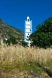 Campo de grão com minarete Imagem de Stock