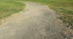 Campo de grama com maneira arenosa do trajeto Fotografia de Stock
