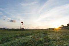 Campo de grama com nascer do sol e fundo do céu azul fotografia de stock