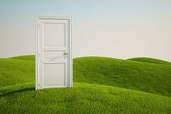 Campo de grama com uma porta ilustração do vetor