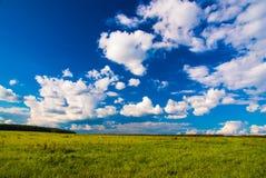 Campo de grama e céu dramático no por do sol Foto de Stock Royalty Free