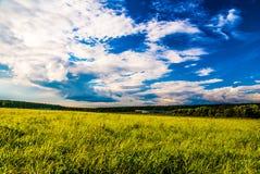 Campo de grama e céu dramático no por do sol Imagem de Stock Royalty Free