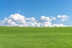 Campo de grama verde com o céu azul claro e as nuvens brancas Imagem de Stock Royalty Free