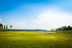 Campo de grama verde com o parque do lago em público Fotos de Stock Royalty Free