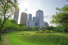 Campo de grama verde no parque grande da cidade foto de stock royalty free
