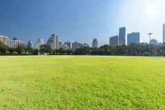 Campo de grama verde no parque no centro da cidade Fotos de Stock