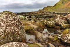 Campo de grandes pedregulhos na costa da calçada em Irelan do norte imagens de stock