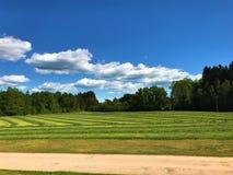Campo de granja fotografía de archivo libre de regalías