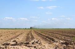 Campo de granja Fotografía de archivo