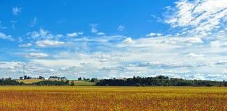 Campo de granja Fotos de archivo