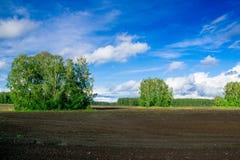 Campo de granja arado Imágenes de archivo libres de regalías