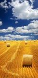 Campo de granja con las balas de heno Fotos de archivo libres de regalías